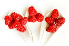 Raspberry trio Stock Photos
