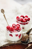 Raspberry and vanilla yogurt dessert. Raspberry and vanilla frosen yogurt dessert selective focus Royalty Free Stock Photography