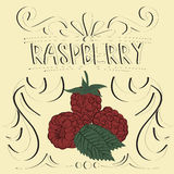 Raspberry vintage poster. Raspberry vintage retro poster design, vector illustration Royalty Free Stock Images