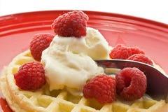 Raspberry Waffle a la mode Stock Photos