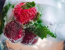 Raspberry in water with bubbles. Fresh raspberry in cocktail water with bubbles and ice Royalty Free Stock Image