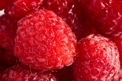 Raspberry with water drops close up. Raspberry with water drops (extreme macro Royalty Free Stock Photos
