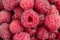 Raspberry with water drops close up. (macro Stock Images