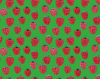illustration raspberry watercolor seamless pattern  Stock Photography