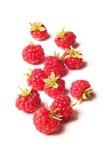 Raspberry  on white Stock Images