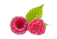 Raspberry on white Royalty Free Stock Images