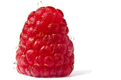 Raspberry on a white background. Fresh juicy raspberry on a white background Royalty Free Stock Photos