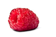 Raspberry on a white background Stock Photos