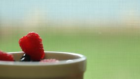 Raspberry in a white bowl Royalty Free Stock Image