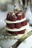 Raspberry and white chocolate mille-feuille Stock Image