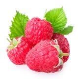 Raspberry  on white Stock Photo