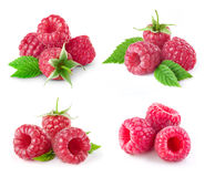 Raspberry on white. Raspberry with leaves collection on white background royalty free stock photos