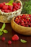 Raspberry and wild strawberry Stock Photography