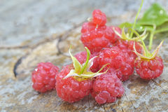 Raspberry on wood background Royalty Free Stock Image