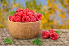 Raspberry in a wooden bowl on table with a blurry garden background.  Royalty Free Stock Photo