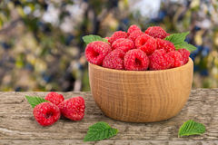Raspberry in a wooden bowl on table with a blurry garden background.  Stock Images
