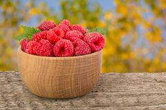 Raspberry in a wooden bowl on table with a blurry garden background.  Royalty Free Stock Image
