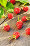 Raspberry on wooden table Stock Image