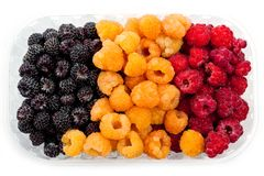 Raspberry yellow juicy bright on a white background.  Stock Images