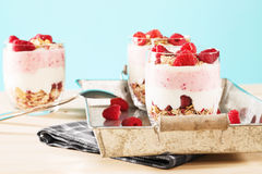 Raspberry yoghurt desserts in a metal tray Stock Photography