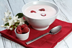 Raspberry with yogurt. Some fresh seasonal summer raspberries with yogurt Stock Photos