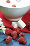 Raspberry with yogurt Stock Photography