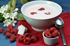 Raspberry with yogurt. Some fresh seasonal summer raspberries with yogurt Royalty Free Stock Photo