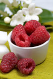 Raspberry with yogurt Royalty Free Stock Photos