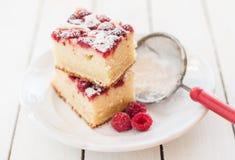 Raspberry and Yogurt Cake Royalty Free Stock Photos