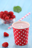 Raspberry yogurt cup Royalty Free Stock Photos
