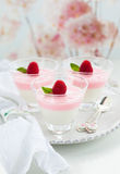 Raspberry yogurt dessert Royalty Free Stock Photos