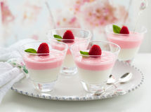 Raspberry yogurt dessert Royalty Free Stock Photo