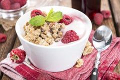 Raspberry Yogurt Stock Photography