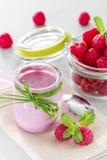 Raspberry yogurt Royalty Free Stock Photos