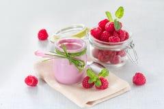 Raspberry yogurt Royalty Free Stock Image