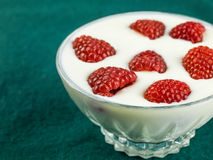 Raspberry and Yogurt Vegetarian Dessert. Against a Green Background Stock Images