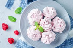 Raspberry Zephyr on a plate with fresh raspberries and mint royalty free stock photography