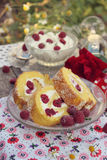 Raspberry roll cake Stock Photo