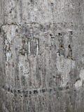 Raspe a Brown, la superficie de la corteza, raspe el marrón en el jardín, Crac Foto de archivo libre de regalías