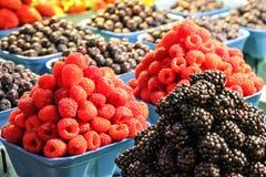 Rasperries i czarne jagody w pokazów barłogach zdjęcia stock