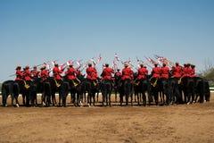 Rassegna musicale di giro di RCMP Fotografie Stock
