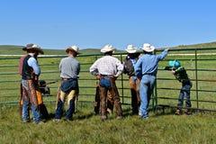 Rassemblement de bétail et marquage à chaud sur un ranch Photo libre de droits