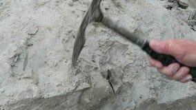 Rassemblement de l'oursin fossilisé martèlement du fossile d'oursin de la roche de craie banque de vidéos