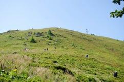 Rassemblement de la myrtille en montagnes carpathiennes Photographie stock libre de droits