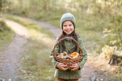 Rassemblement des champignons de couche image stock
