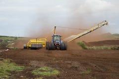 Rassemblement du marais Photographie stock libre de droits