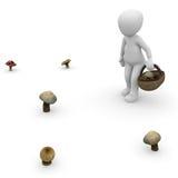 Rassemblez les champignons Image stock