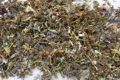 Rassemblez les herbes sèches photos stock