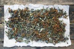 Rassemblez les herbes sèches photo stock