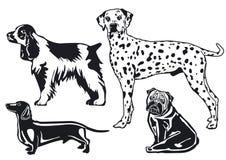 Rassen van honden stock illustratie